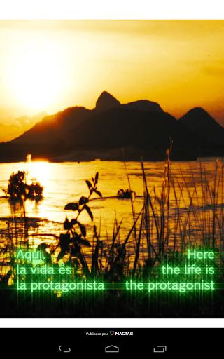 Revista Amazônia Nativa