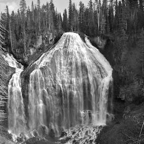 by Shelly Hendricks - Black & White Landscapes ( , black and white, b&w, landscape )