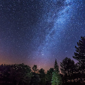 Milky way by Jose María Gómez Brocos - Landscapes Starscapes ( sky, stars, trees, forest, night, milky way )