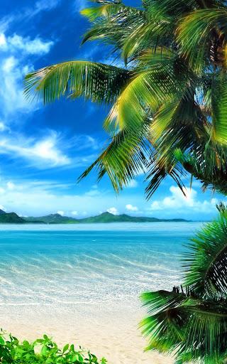 Tropical Beach Live Wallpaper 18.0 screenshots 8