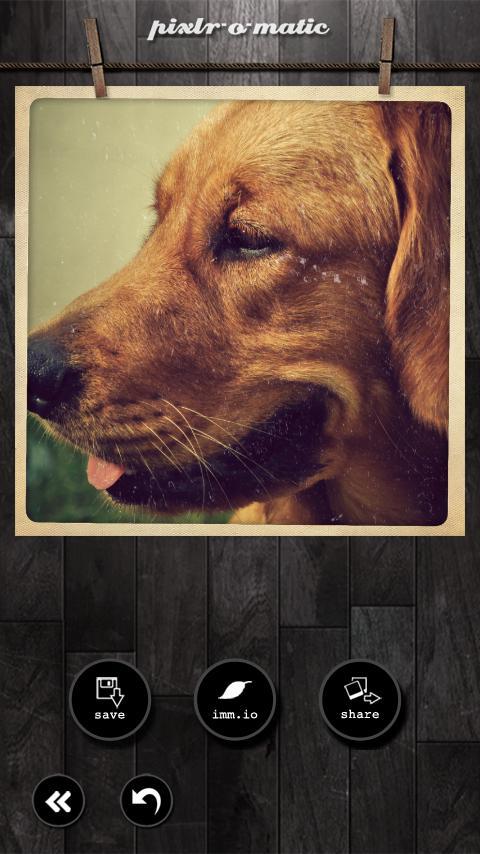 Pixlr-o-matic screenshot #8