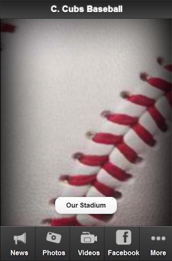 Chicago C. Baseball Fan
