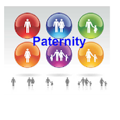 All About Paternity