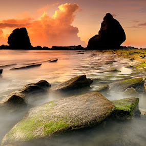 Everything About The Rock by Bob Shahrul - Landscapes Waterscapes ( cokin, seascapes, green, nikkor, rock, seascape, beach, papuma, indonesia, long exposure, java, east, nikon, hoya )