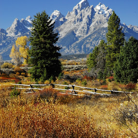 Grand Teton in Autumn by Linda Labbe - Landscapes Mountains & Hills ( hiking trails., mountains, fall colors, serene, western scene )