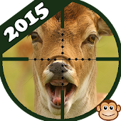 Deer Hunt 2015-Commando Hunter