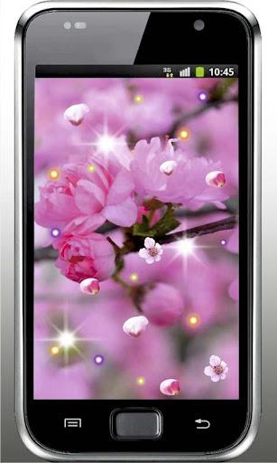 Best Sakura HD live wallpaper