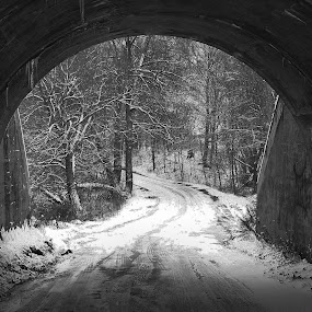 Tunnel Through by David W Hubbs - Black & White Landscapes ( winter, snow road, black and white, snow, tunnel )