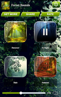 Lesní Zvuky - náhled