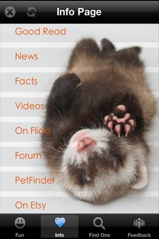 Ferret+ Free- screenshot