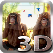 Three Wise Monkeys 3D