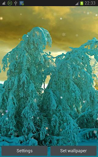 Xmas Beautiful Snowflakes HD