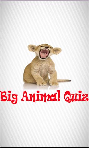 Big Animal Quiz