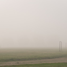 runner in fog by Shirley Cohen - Landscapes Weather ( fog, california, sports, track, runner )
