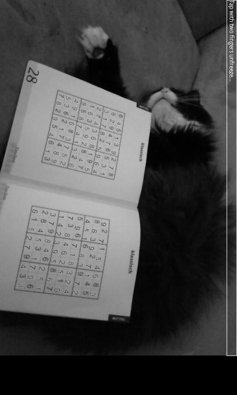 AR Sudoku Solver- screenshot