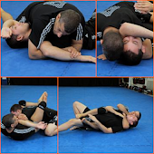 MMA Submission Holds