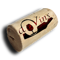 DVins icon
