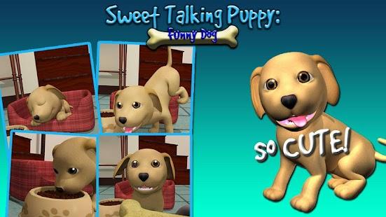 甜說話的小狗:有趣的狗