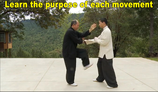 Yang Tai Chi for Beginners 2&3 Screenshot