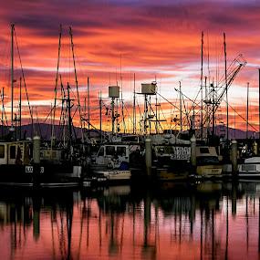 Harbor-rise by Brandon Chapman - Landscapes Sunsets & Sunrises (  )