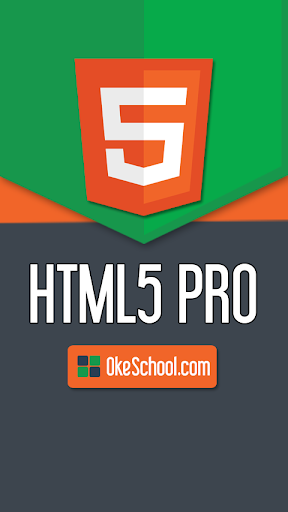 HTML5 Pro Guide