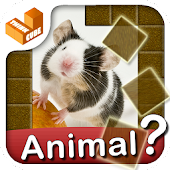 Who am I? -animal guess trivia