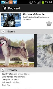 Dogs Breeds FREE- screenshot thumbnail