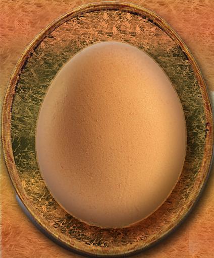NassT - hatch the egg