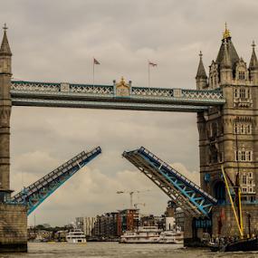 Tower Bridge by Veronika Gallova - Buildings & Architecture Bridges & Suspended Structures ( landmark, london, tower bridge,  )