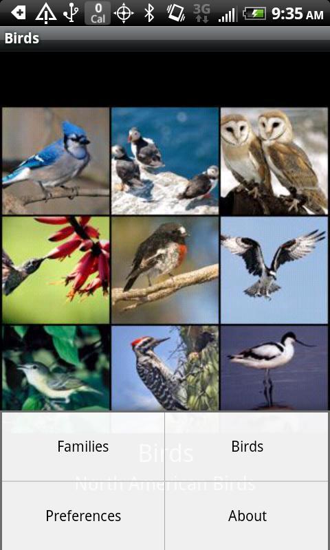 Birdspotter- screenshot