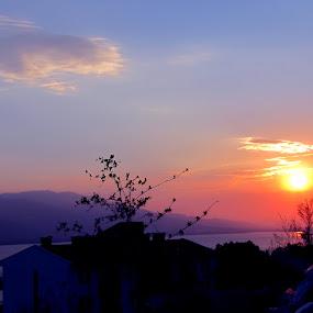 Sunset by Suaib Akhter - Landscapes Sunsets & Sunrises (  )