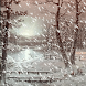 Snow Storm Live wallpaper