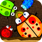 Crazy Eat Bugs icon