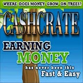 FREE CASH FROM HOME SURVEYS