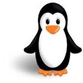 Penguin Memory Game