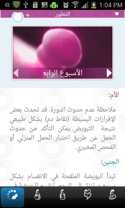 دليل الحمل Pregnancy Guide - screenshot