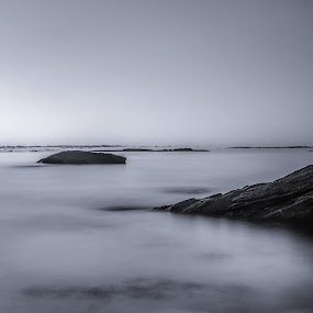 | anywhere | by Photo Jovan - Landscapes Waterscapes ( water, greyscale, water fowl, black and white, d800, sundown, stone, stones, waterscapes, clips, sun,  )