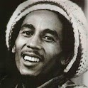 Bob marley go launcherEX theme icon