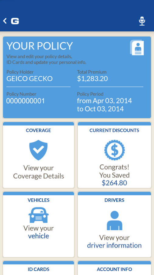 Geico Glass Coverage