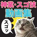 すごすぎ!!プロ技・神技・すご技・神業動画まとめ icon