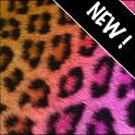 GO Contacts Pretty Cheetah icon