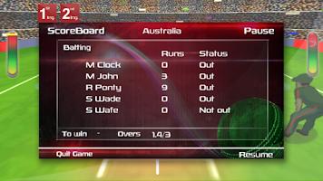 Screenshot of Box Cricket International 2014