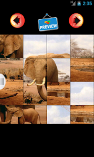 Jigsaw Animal Couples Puzzle - screenshot thumbnail