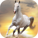 BEST HORSES LIVE WALLPAPER HD icon