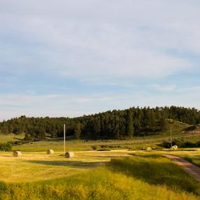 Down Hay Road by J.c. Phelps - Landscapes Prairies, Meadows & Fields ( field, mountains, hay bales, hay, dusk )
