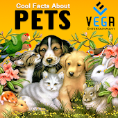 Cool Facts about Pets