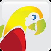 College Parrot