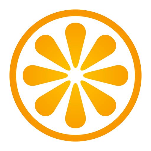 VisitBasis   Retail Audit and Merchandising app