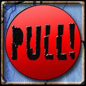 PULL! Skeet Shooting
