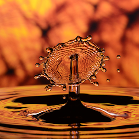 Water Droplet Collision by Micah Jaron Flack - Abstract Water Drops & Splashes ( water, water collision, droplet, water droplet collision, water droplet,  )